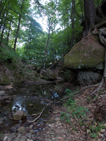 Stream flowing in the gorge at Durward's Glen