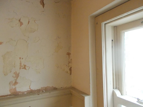 Peeling paint in a stairwell