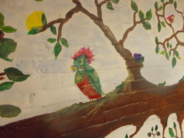 The quetzal in the basement of Holy Redeemer School