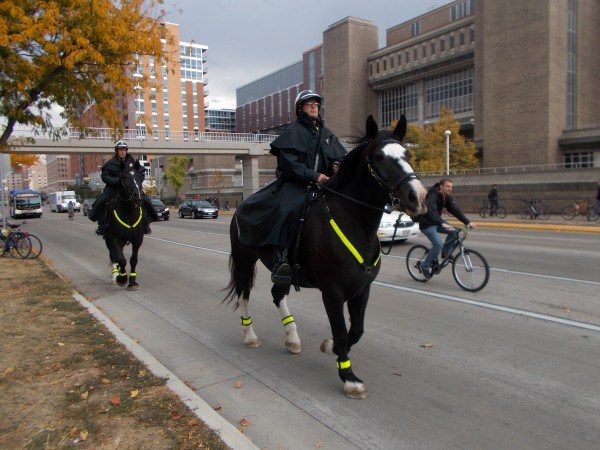 The Madison Police have increasingly chosen Percherons. This was on University Avenue on the day that we protested Obama's visit to Bascom Hill.